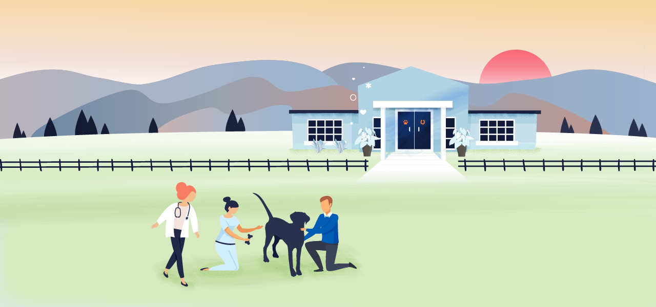 Post Pandemic: Preparing Your Veterinary Hospital for What's Next