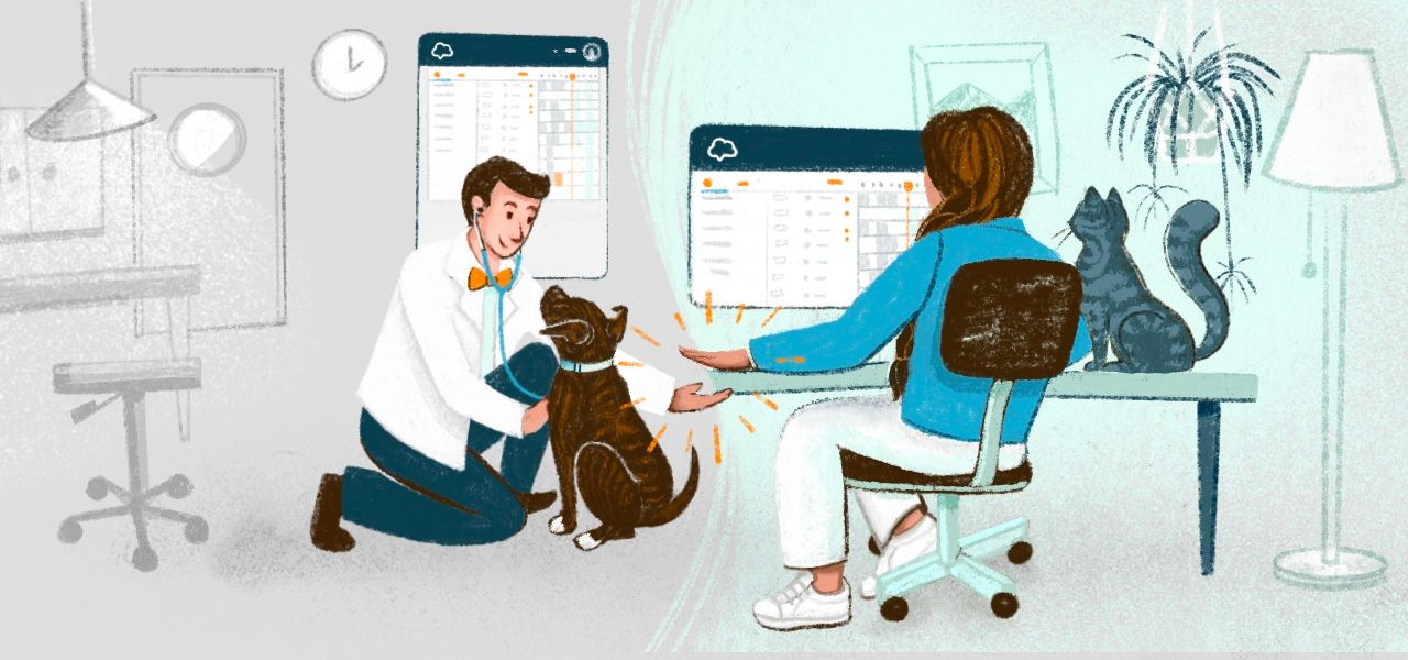 How Instinct Hospitals Get the Most Out of Their Veterinary Workflow Software
